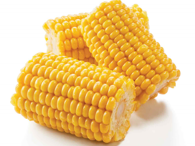 Summer Corn on the cob